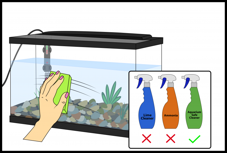 how to clean fish tank exterior